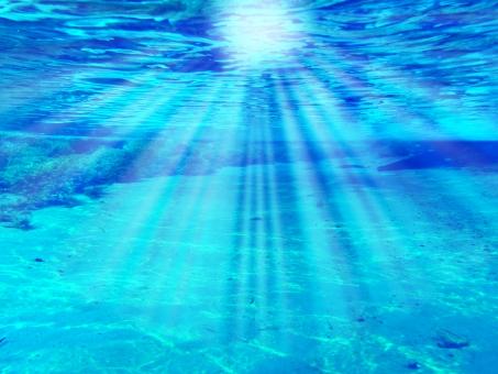 背景 背景素材 テクスチャ テクスチャー ブルー 青 水色 マリンブルー 差し込む 差し込み 反射 水面 水中 バックグラウンド 海底 海 海の中 海中 海の底 波 光 ダイビング スノーケル スノーケリング シュノーケリング シュノーケル 自然 スキューバダイビング 潜水 リラックス 癒し ヒーリング 南国 ウエーブ キラキラ きらきら 輝き かがやき きらめき ブラジル ボニート 藻 水草 エコ 環境 緑 7月 8月 夏 夏休み 旅 旅行 アクティビティ アウトドア 潜る もぐる