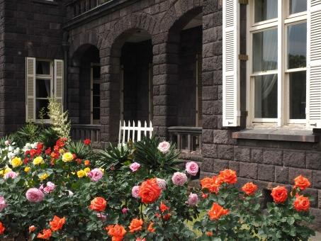 旧古河庭園の薔薇の写真