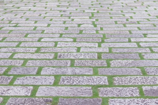 芝 芝生 石 敷石 タイル 庭 中庭 広場 公園 歩道 遊歩道 道 道路 歩行 歩く 散歩道 通路 石畳 石材 資材 自然素材 地面 地 土地 整備 舗装 路床面 植物 草 緑 緑化 風景 景色 背景 模様 屋外 テクスチャ