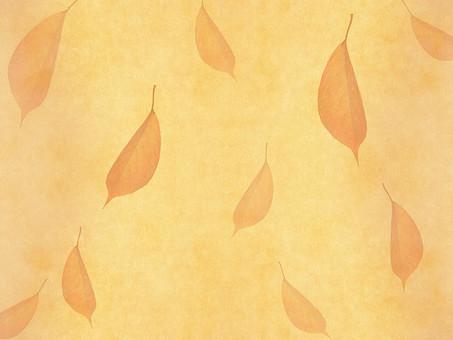 葉 落ち葉 枯れ葉 ドライリーフ 木の葉 素材 葉脈 植物 自然 ベージュ 黄色 オレンジ パターン 暖色 ナチュラル 暖かい 乾燥 空間 テクスチャ 質感 背景 背景素材 バックグラウンド テキストスペース コピースペース  半透明 秋 赤  紅葉 散らばる 散布 散る バラバラ 透ける 透かし 枠 フレーム