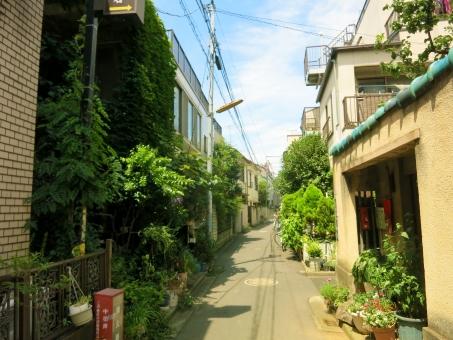 入谷 下町 台東区 東京 tokyo 16 昭和 人情 街並 風情 古 町 鶯谷 植栽 盆栽 植木 路地裏 細道