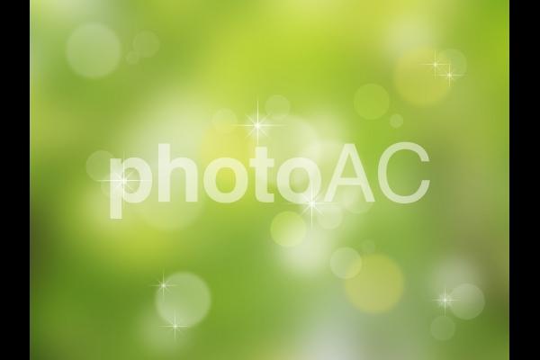 さわやかな緑の背景の写真