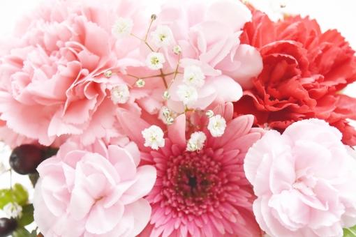 フラワーアレンジメント 花 はな フラワー カーネーション かすみ草 花束 花たば 母の日 誕生日 感謝 プレゼント ガーベラ ピンク ぴんく 赤 レッド 左より 左側 幸せ 幸運 ありがとう 背景 白 ホワイト 背景白 バックグラウンド 素材 イメージ 壁紙 テクスチャ 自然 植物 生け花 リース 明るい 贈る ギフト ブーケ 生花 お祝い メッセージカード メッセージ クリスマス 恒例行事 行事 バレンタイン 贈り物 お返し 結婚 結婚式 ウエディング 春 はる 5月 12月 6月 2月 可愛い かわいい 優しい 愛しい 美しい 接写 アップ