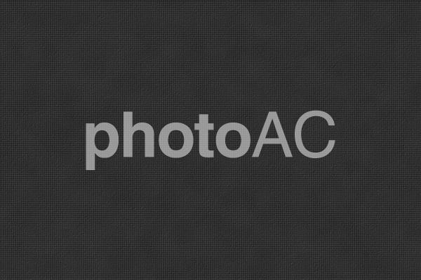 背景素材 ー プリズムレザー(角シボ型押し牛革)/黒・ブラックの写真