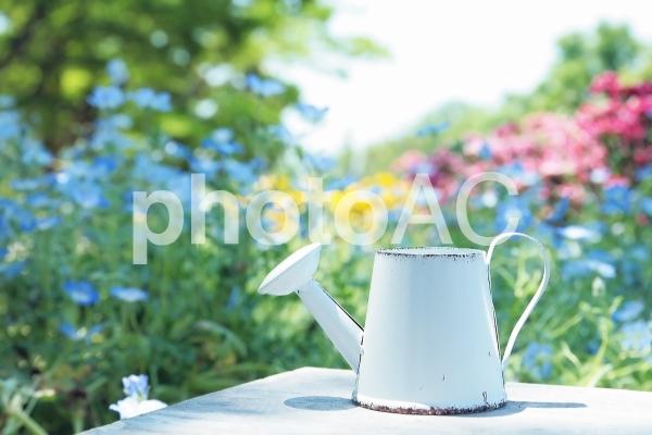 花とジョウロの写真