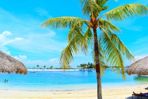 【フィリピン・セブ島】セブ島の海の写真