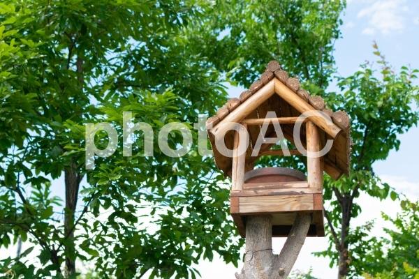 ログハウス風の野鳥のエサ台の写真