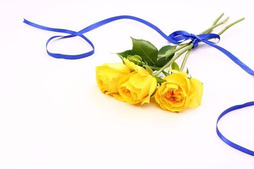 父の日 イベント プレゼント ギフト 行事  花 フラワー 生花 バラ ばら 薔薇 明るい さわやか 爽やか   黄色  6月 六月  贈る    リボン りぼん 青 青色  白 白バック