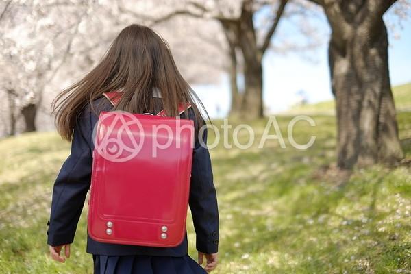小学生の女の子26の写真