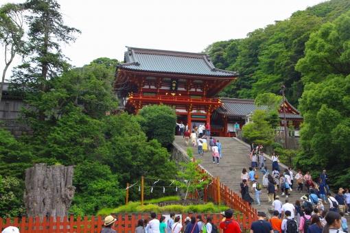 鎌倉 鶴岡八幡宮 階段 参道 神様 神