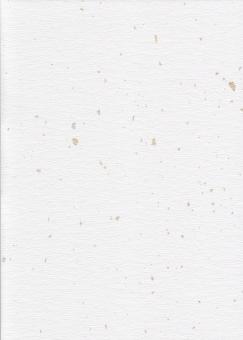 和紙 白い紙 金箔 銀箔 上品の写真