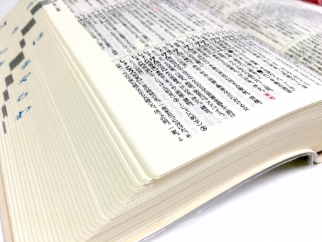 辞典 辞書 国語 助言 調べる サーチ 意味 種類 宿題 学校 勉強