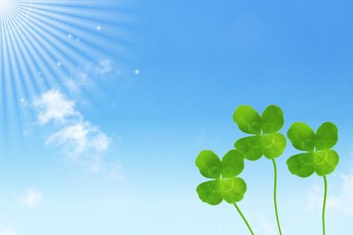 四つ葉 クローバー シロツメクサ 空 青空 ブルー 植物 風景 背景 晴れ 天気 快晴 太陽 光 輝き きらめき 葉 葉っぱ しあわせ ラッキー 幸福 幸せ 平和 喜び 喜ぶ メルヘン ファンタジー かわいい エコ エコロジー 太陽光 太陽光線 バックグラウンド 青 水色 さわやか 鮮やか 元気 活発 ハツラツ 上昇 上昇志向 前向き スピリチュアル ポジティブ 明るい 応援 コピースペース テキストスペース お守り 成功 出世 チャンス 幸運 春 夏 葉書 はがき ハガキ グリーン フレッシュ 希望 受験 合格 メッセージ 枠 フレーム 合格祈願 ポストカード メッセージカード バースデーカード