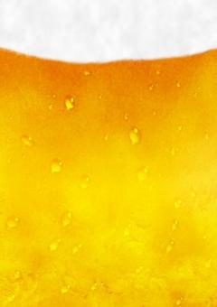 生ビール ビール アルコール ビアガーデン 水滴 泡 生 生中 氷 夏 乾杯 カンパイ お疲れ様 居酒屋 キンキン 冷えた 冷たい 涼しげな 涼しい のどごし 喉越し スッキリ 美味しい 美味い ドリンク 飲み物 真夏 飲酒 コールド クール