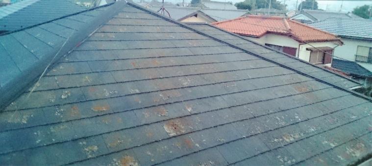 塗装が必要な屋根 屋根 ペンキ 塗装 とそう 家の手入れ roof
