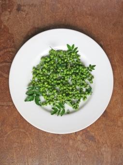 山椒 さんしょ サンショウ 青山椒 青い 緑 香辛料 薬味 調味料 苦味 辛味 刺激 ピリリ アクセント 果実 種 薬膳 和食 漢方