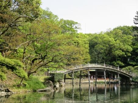 四国 香川 香川県 栗林公園 公園 日本庭園 高松 庭園 高松市 和 和風 日本 景色 自然 風景 庭 観光 観光地 名所 観光名所 緑 みどり グリーン マイナスイオン リラックス 林 木 森林 湖 池 水 水面 植物 橋 ブリッジ
