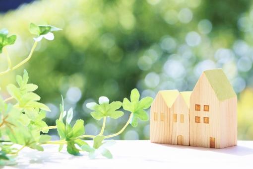 家と光と緑の写真