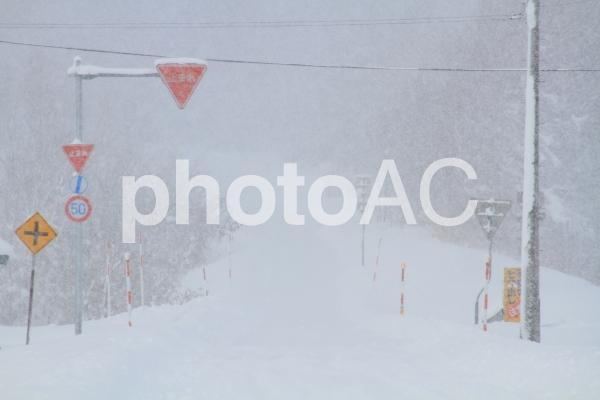 大雪の道の写真