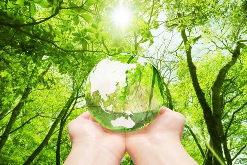 森林 地球儀 エコ イメージ エコイメージ 手 救う 緑 葉っぱ 葉 木 樹木 森 林 透ける 透明感 クリーン クリーンエネルギー 地図 世界地図 日本地図 世界 日本 グローバル 自然 地球 植物 環境 ビジネス コピースペース 人物 明るい 背景 新緑 エコロジー アジア 緑色 エネルギー 自然エネルギー 晴れ 清潔 省エネ 透明 エコロジーイメージ ナチュラル グリーン 夏 eco 太陽光 光 木漏れ日 木洩れ日