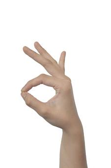 人物 背景 白 白背景 白バック 切り抜き パーツ ボディパーツ 腕 片手 ポイント 指 手首 ジェスチャー 身ぶり 肌 余白  シンプル ハンドパーツ 右手 手ぶり 人の手 掴む 摘む 触る マル オーケー オッケー OK