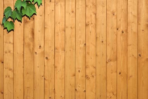 木目 木 板塀 壁 樹木 植物 葉 背景 背景素材 テクスチャ テクスチャー ツタ 緑 グリーン