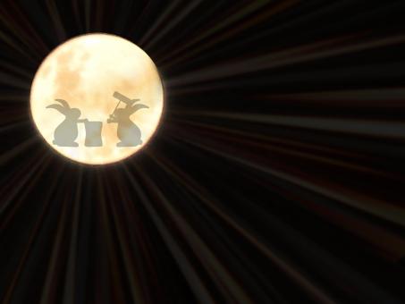 月と兎の写真