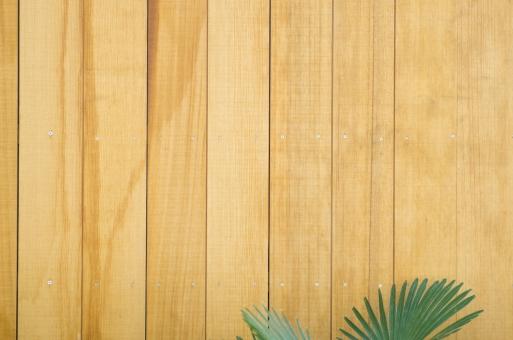 壁 板 木 ナチュラル 葉 葉っぱ ホワイト ウッド 文字スペース 自然 かべ カベ wood 板塀 diy 日曜大工 木目 カフェ 素材 コピースペース テキストスペース 背景素材 植物 デザイン素材 背景 グリーン 緑 テクスチャ 住宅 エクステリア 外装 建材 壁紙