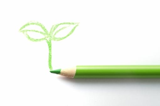 色エンピツ 色鉛筆 若葉 双葉 エコロジー 環境 社会 画材 新緑 リサイクル 誕生 デザイン 再生 命 生命 若葉 春 新しい 葉っぱ かわいい 希望 期待 未来 明日 夢 エコ パステル 黄緑 グリーン 芽