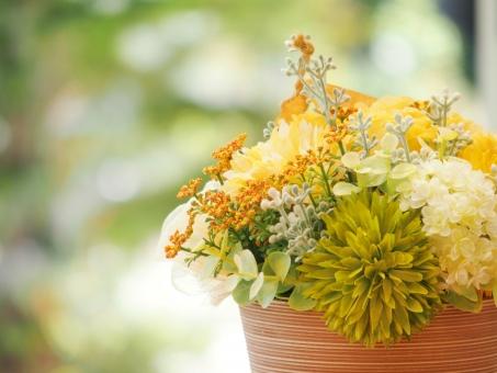 黄色い花 寄せ植え 植物 花 造花 鮮やか 明るい 優しい グリーン 緑 鉢植え 観葉植物 ガーデニング インテリア 背景 自然 春 初夏 4月 5月 6月 テラコッタ 穏やか 平和