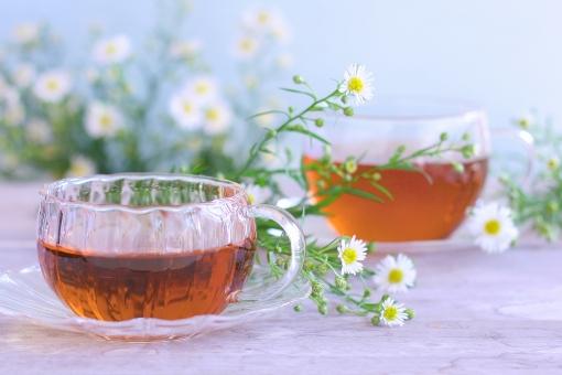 紅茶 お茶 ティー おやつ 休憩 休けい リラックス ほっ ホット 花 白い花 ガラス 孔雀草 秋