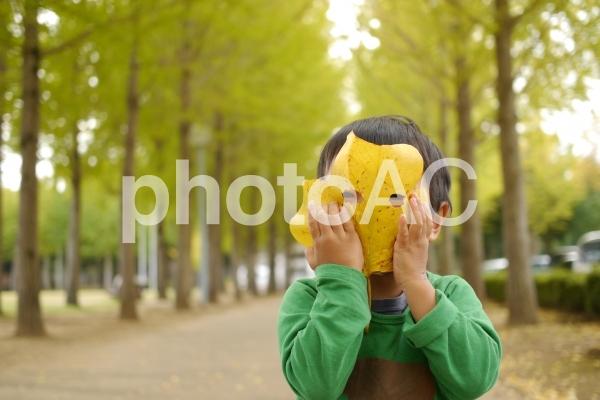 葉っぱのお面の写真