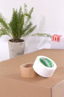 ダンボール 段ボール ガムテープ テープ 引越し 引っ越し 箱 荷物 梱包 荷造り 整理 整頓 運送 整理整頓 白テープ 巻き 粘着テープ 紙テープ  布テープ 宅急便 引っ越し作業 移住 茶色 白色 室内 屋内 輪 植物 観葉植物 緑色 鉢植え