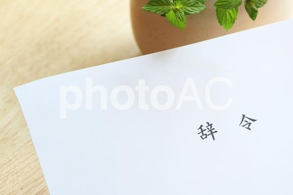 辞令の写真