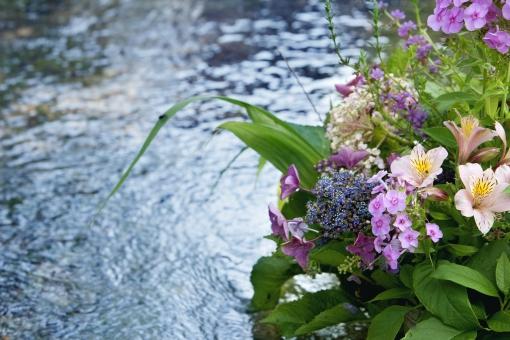 自然 植物 風景 花 野外アウトドア 小川 川辺 おもてなし 寄せ植え 水の流れ 日本的 初夏 夏イメージ 綺麗 涼し気な 光透過光 癒す 暑中見舞い ポストカード 待ち受け画面 コピースペース 避暑地イメージ ビューティフル せせらぎ 涼感 いらっしゃいませ