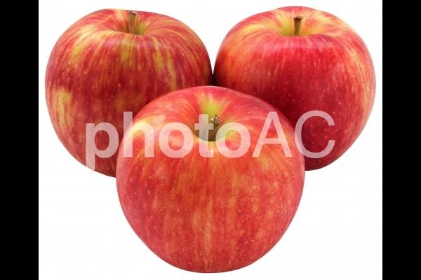 りんご_サン津軽(PSDは背景透過・切抜きパス入り)の写真