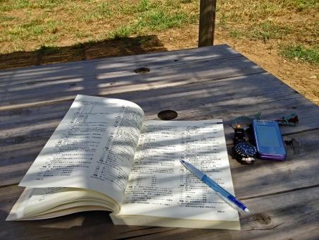 日陰での勉強の写真