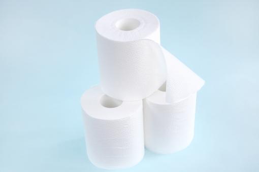 トイレットペーパー トイレ 紙 ペーパー 便器 水洗 水洗便器 健康 白 ちり紙 エコ シングル 衛生品 芯 ダブル ロール 病気 清潔 体 おしり 排泄