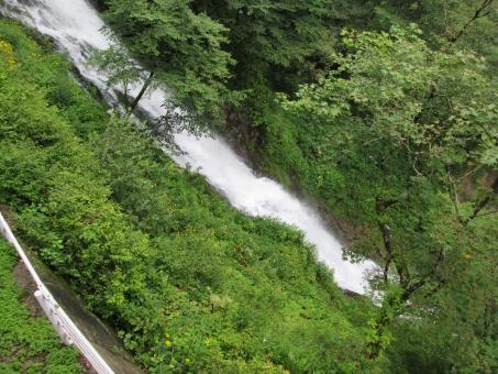 華厳の滝 華厳滝 滝 たき 日光 にっこう 日光市 日本 java マイナスイオン 緑 みどり green 景色 風景 山 やま 大自然