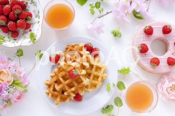 春のお茶会の写真