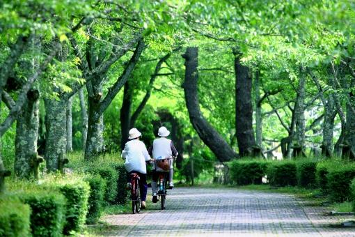 自然・風景 植物 樹木 公園 人物 自転車 初夏イメージ 木陰 女性 仲良し 友人 すがすがしい 五月・六月 若葉の季節 のんびり 平穏な日常 平凡な景色 木漏れ日 光透過光 待ち受け画面 おばさん 森・林・公園 公共の場 グリーンバック 背景 平和イメージ コピースペース 野外アウトドア