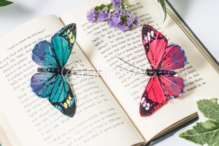 アンティーク洋書と蝶々01の写真