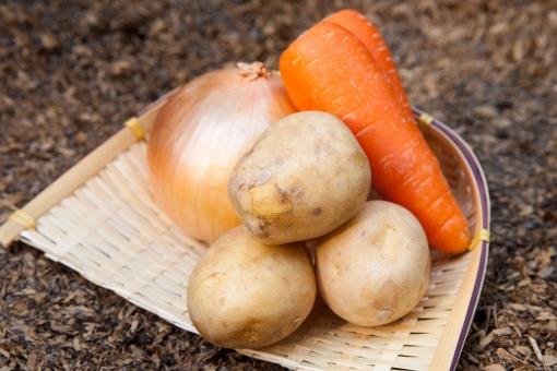 じゃがいも ジャガイモ 人参 にんじん ニンジン たまねぎ 玉ねぎ タマネギ 玉葱 肉じゃが ビーフシチュー カレー 食べ物 健康 野菜 素材 ざる かご 土 シチュー クリームシチュー