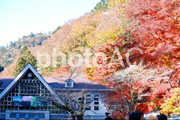 紅葉の高尾山の写真