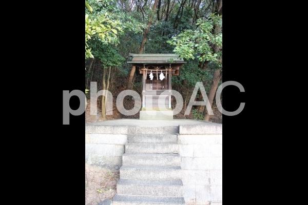 山祇神社の写真