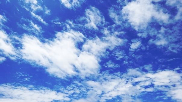 空 大空 空間 雲 曇り 天気 季節 初夏 見渡す 見上げる 気持ちいい リラックス 自然 風景 景色 青 白 collar カラー 色 飛ぶ ジャンプ ありがとう 散歩 歩く 公園 楽しい エンジョイ 春 夏 秋 冬