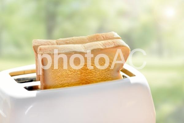 トースターでトーストされた2枚の食パン3 psdの写真