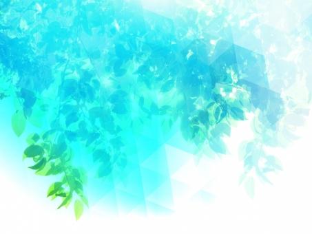 緑 グリーン 黄緑 新緑 明るい 森 植物 木 若葉 自然 春 初夏 葉っぱ 癒し リラクゼーション 葉 木漏れ日 輝き マイナスイオン 爽やか 森林 眩しい 5月 背景 テクスチャー バックグラウンド ブルー 幻想 メルヘン ファンタジー