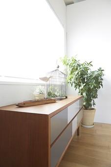 リビング 室内 屋内 部屋 インテリア デザイン 壁 床 板張り 窓 棚 グリーン 緑 観葉植物 明るい おしゃれ  間仕切り フローリング 白壁 内装 インテリア装飾 家具 室内装飾 雑貨 小物