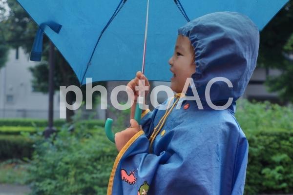 梅雨の雨降りの写真